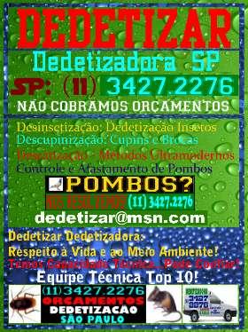Dedetizadoras São Paulo-11-3427-2276-Dedetização SP